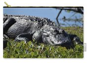 Sunning Gator Carry-all Pouch