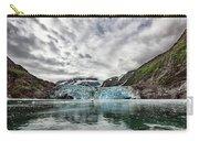 Surprise Glacier Carry-all Pouch