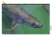 Tarpon Carry-all Pouch