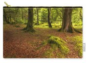 The Ardgartan Forest Carry-all Pouch
