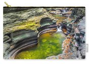 The Narrows Of Watkins Glen Carry-all Pouch