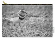 Three Banded Plover Carry-all Pouch