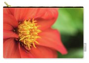 Tithonia Rotundifolia, Red Flower Carry-all Pouch