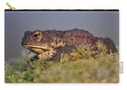 Toad Carry-all Pouch