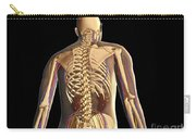 Transparent View Of Human Body Showing Carry-all Pouch