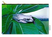 Tree Frog On Desert Rose  Carry-all Pouch