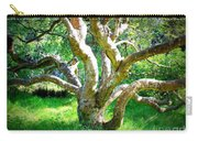 Tree In Golden Gate Park Carry-all Pouch