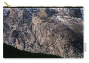 Teton Tree Line  Carry-all Pouch