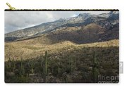 Tucson Landscape Carry-all Pouch