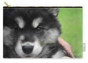 Up Close Look At The Face Of An Alusky Puppy Dog Carry-all Pouch