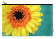 Vibrance Carry-all Pouch