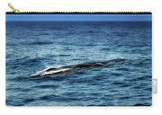 Whale Watching Balenottera Comune 3 Carry-all Pouch