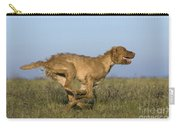 Wirehaired Vizsla Running Carry-all Pouch