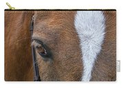 Wonder Pony Carry-all Pouch