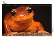 Yellow-eye Ensatina Salamander Carry-all Pouch