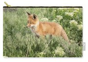 Young Red Tailed Fox Carry-all Pouch