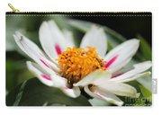 Zinnia Named Zahara Starlight Rose Carry-all Pouch