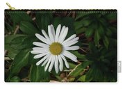 10-15-16--4996 Montauk Daisy Don't Drop The Crystal Ball Carry-all Pouch