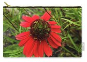 10-27-16--1982 Echinacea Cheyenne Spirit Don't Drop The Crystal Ball Carry-all Pouch