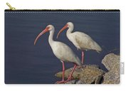 100b5790 White Ibis Carry-all Pouch