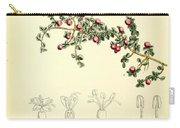 Illustrations Of The Flowering Plants And Ferns Of The Falkland Islands Carry-all Pouch