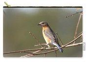 105319 - Bluebird Carry-all Pouch