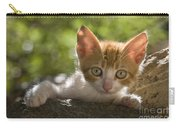 Kitten On A Wall Carry-all Pouch