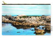 West Coast Seascape 2 Carry-all Pouch