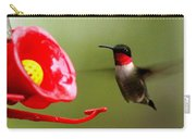 1164 - Hummingbird Carry-all Pouch