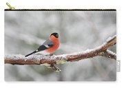 Eurasian Bullfinch In Winter Carry-all Pouch