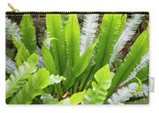 Rainforest At Foxground, Kiama Carry-all Pouch