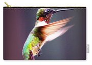 1257-006 - Ruby-throated Hummingbird Carry-all Pouch