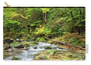1266 Great Smoky Mountain National Park Carry-all Pouch