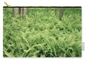 146112 Ferns In Pisgah Nat Forest V Carry-all Pouch