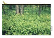 146113 Frens In Pisgah Nat Forest H Carry-all Pouch