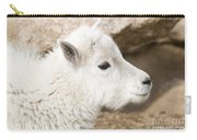 Baby Mountain Goats On Mount Evans Carry-all Pouch