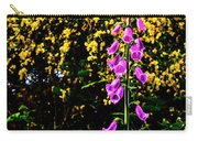 Cape Blanco Lighthouse Carry-all Pouch