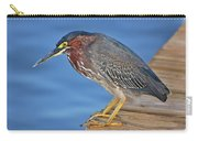 16- Green Heron Carry-all Pouch