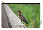 81- Green Heron Carry-all Pouch