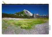 J P Landscape Carry-all Pouch