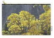 1m6610 Middle Cathedral Rock In Autumn Carry-all Pouch