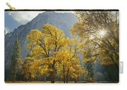 1m6611-oak Trees And Middle Cathedral Rock In Autumn Carry-all Pouch