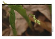 1st Lily Of Spring Carry-all Pouch