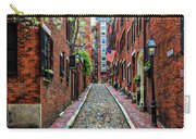 Acorn Street Boston Carry-all Pouch