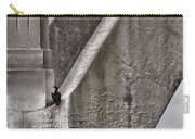 Architectural Detail Carry-all Pouch