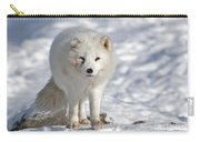Arctic Fox... Carry-all Pouch
