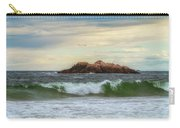 Atlantic Waves Carry-all Pouch