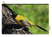 Audubon Oriole Carry-all Pouch