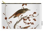 Audubon: Thrush Carry-all Pouch