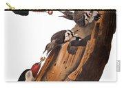Audubon: Woodpecker Carry-all Pouch